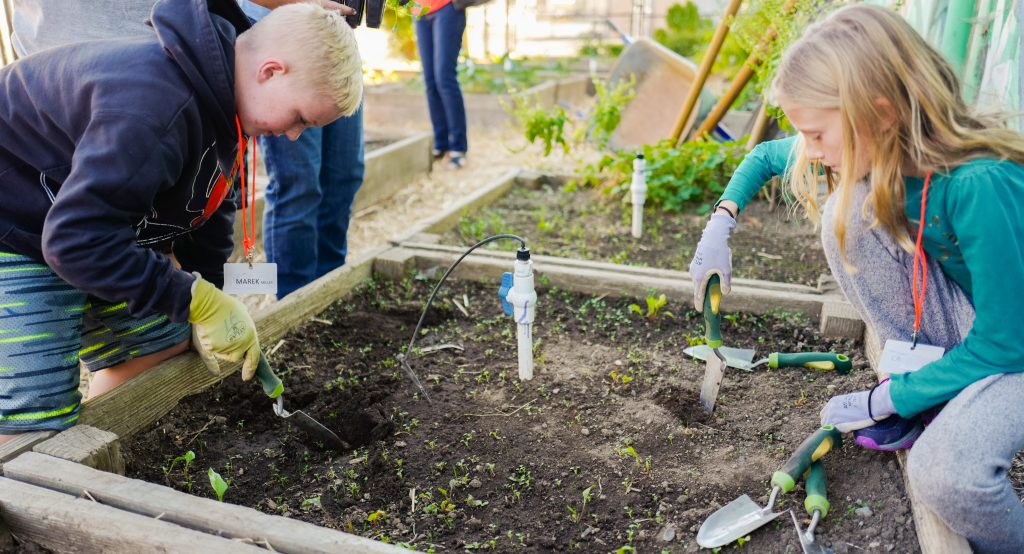 Harvest Middle School students tend the garden